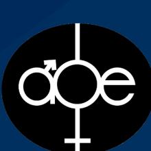 Branding Development & Website Content